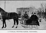 wpg winter scene horse sleigh