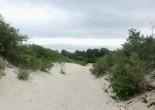 GrandBeach dune path sm